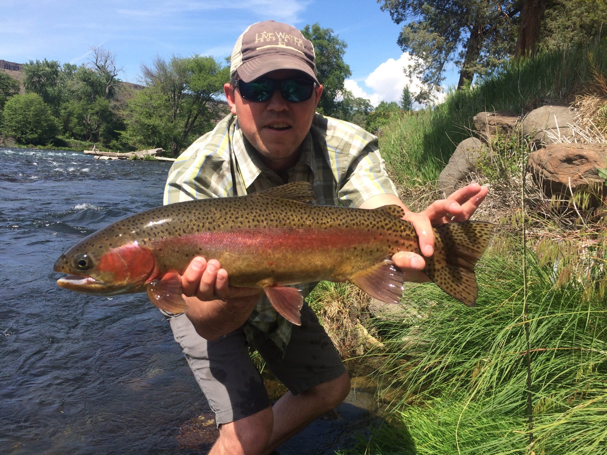 Fishing on the lower deschutes live water properties for Best trout fishing states